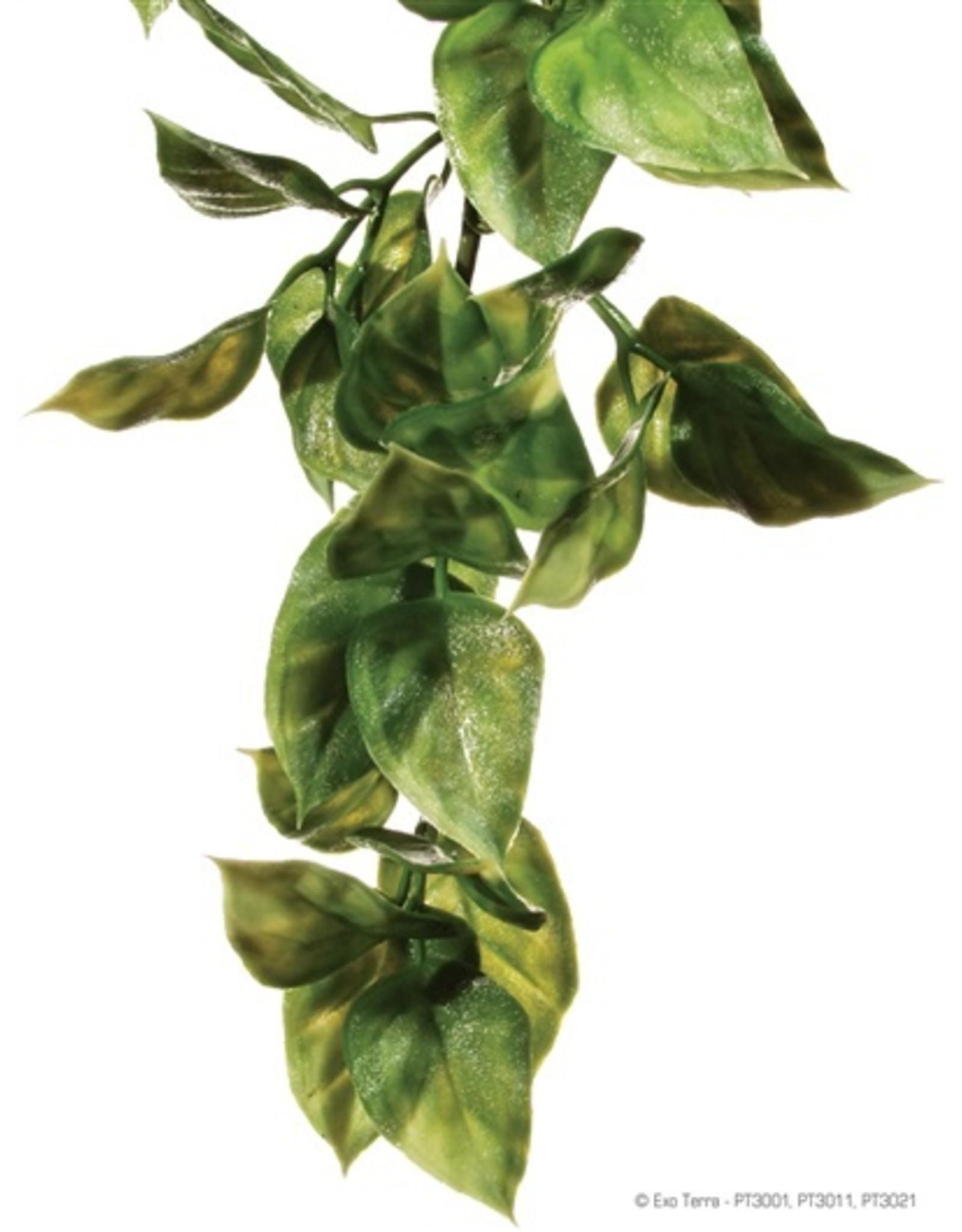 Exo Terra EXO TERRA Hanging Rainforest Plant
