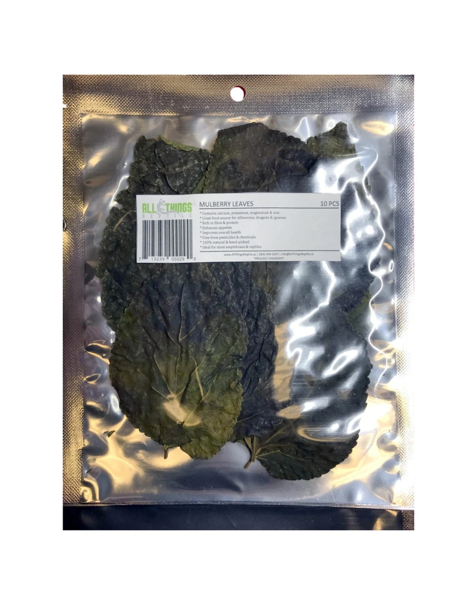 All Things Reptiles ALL THINGS REPTILE Mulberry Leaves 10pack