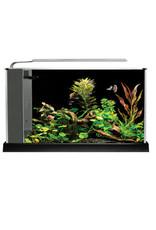 Fluval FLUVAL SPEC Black Glass Aquarium 5Gal (19L)