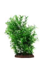 "Fluval FLUVAL Aqualife Plant Scape Small Helzine 4-8"""