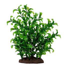 "Fluval FLUVAL Aqualife Plant Scape Large Bacopa 4-8"""