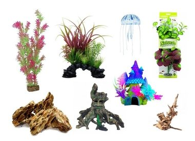 Aquatic Decor
