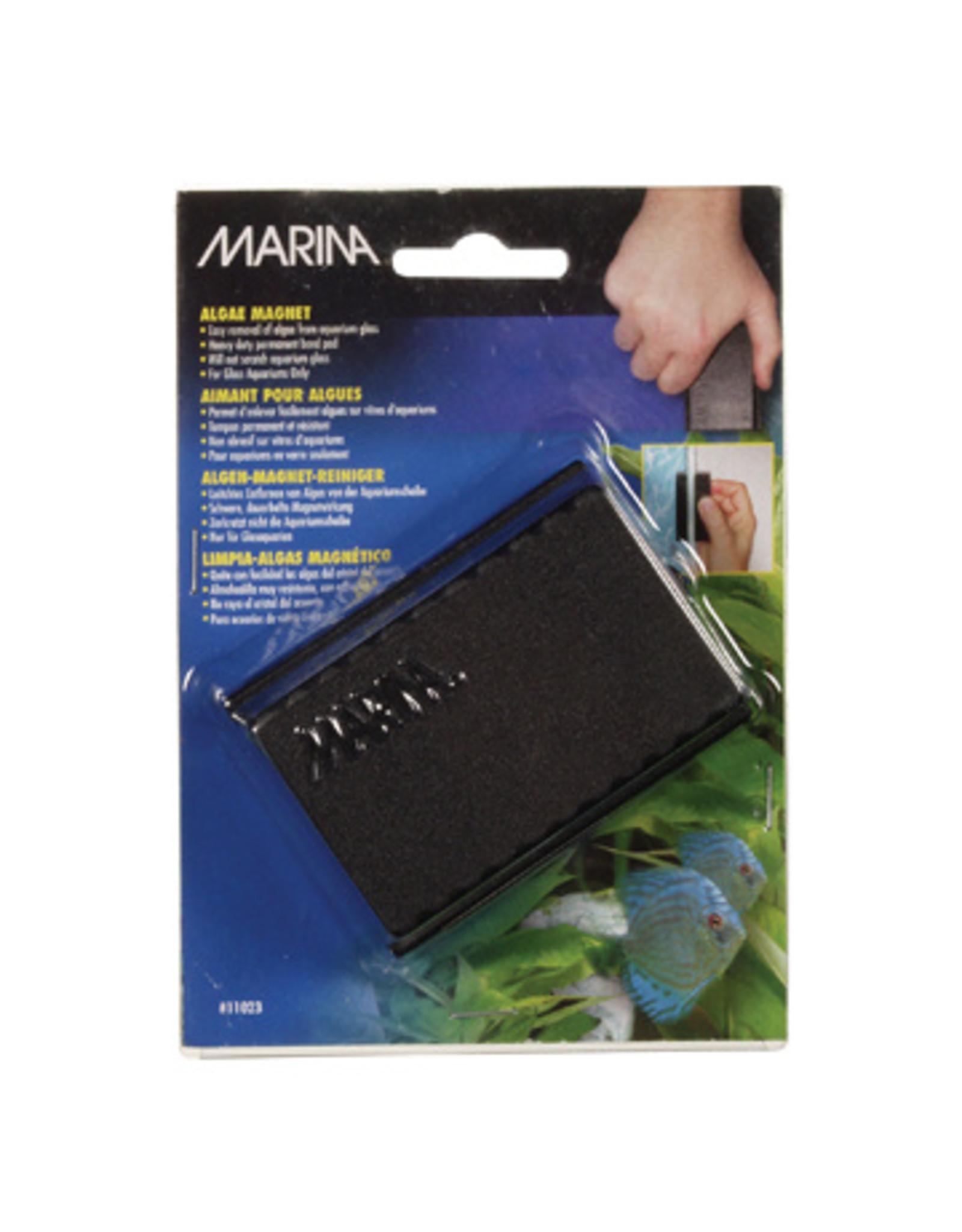 Marina MARINA Algae Magnet