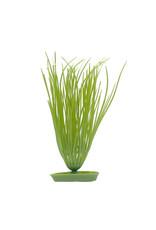 Marina MARINA AquaScaper Plants Hairgrass