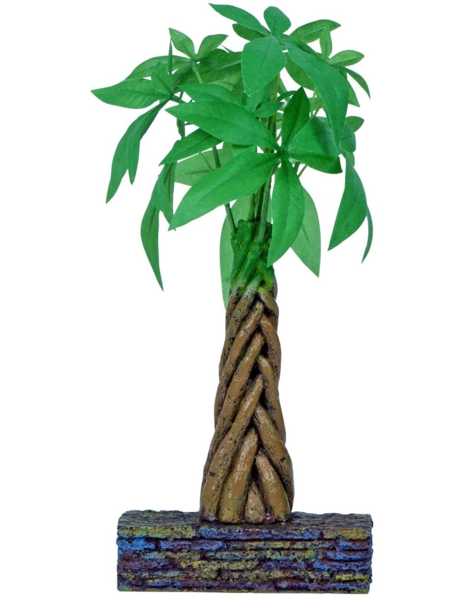 Marina MARINA Betta Ornament Braided Money Tree