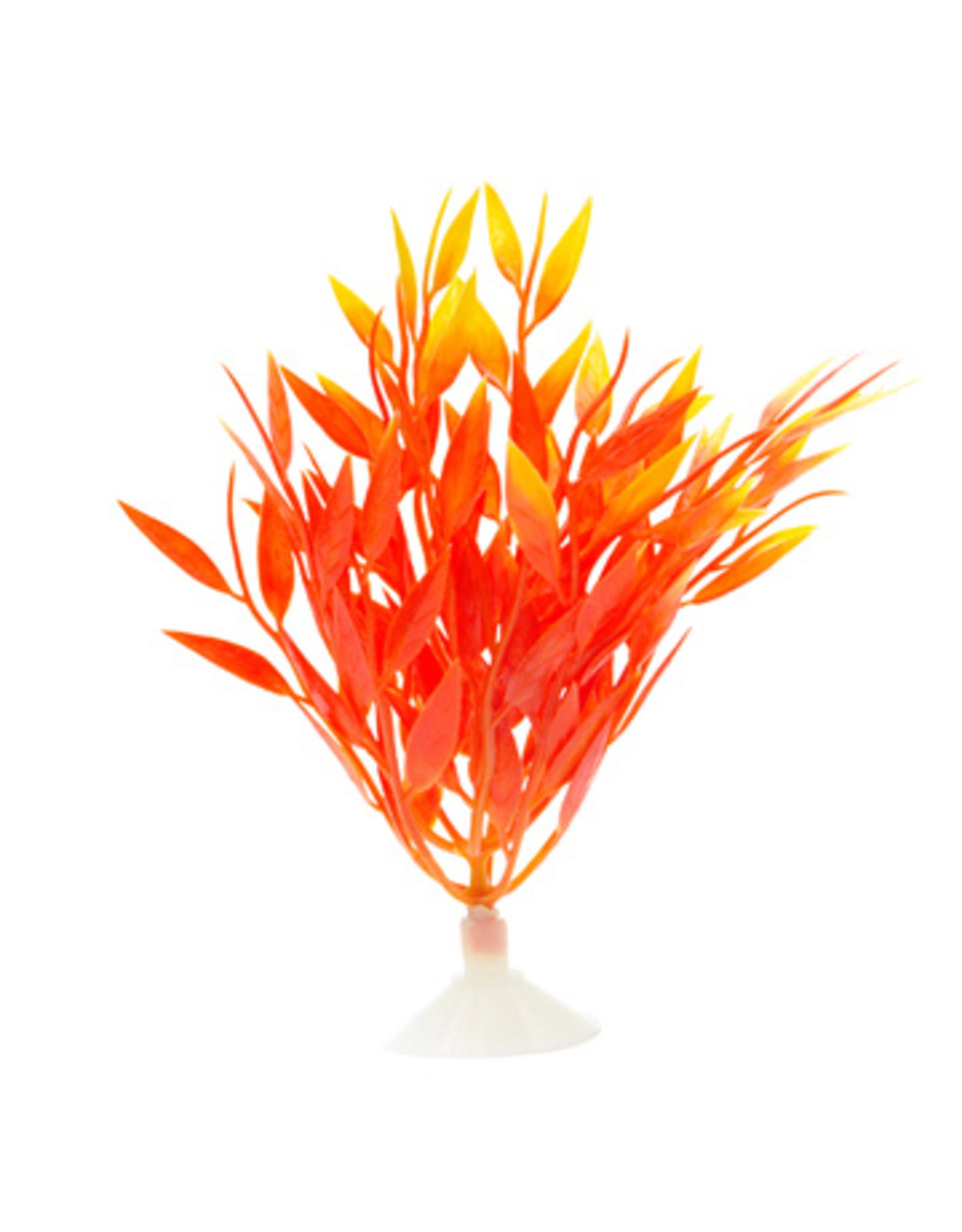 Marina MARINA Betta Ornament Fire Grass