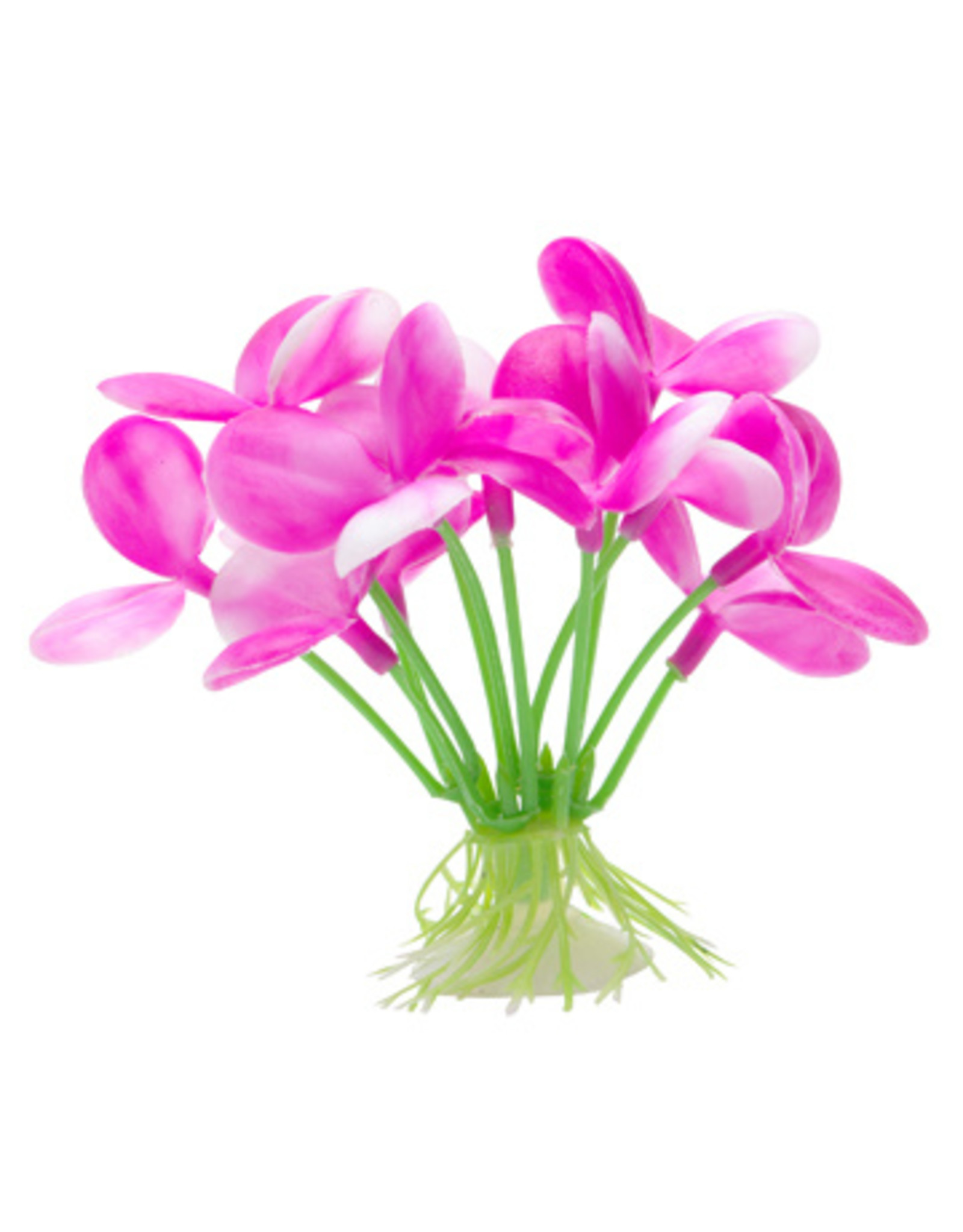 Marina MARINA Betta Ornament Pink Orchid
