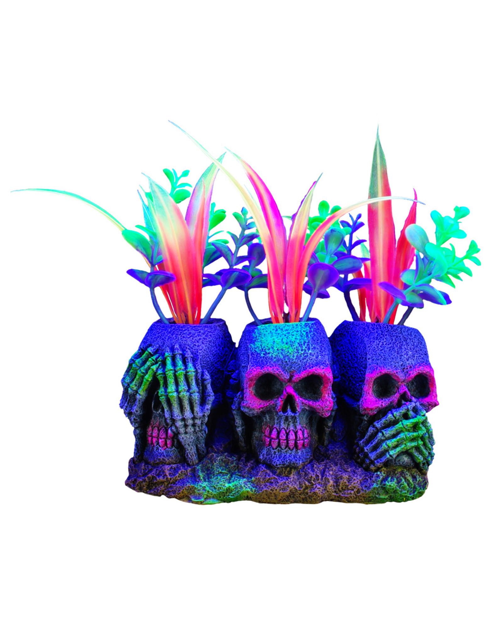 """Marina MARINA iGlo 3 Skulls with Plants, 3"""""""
