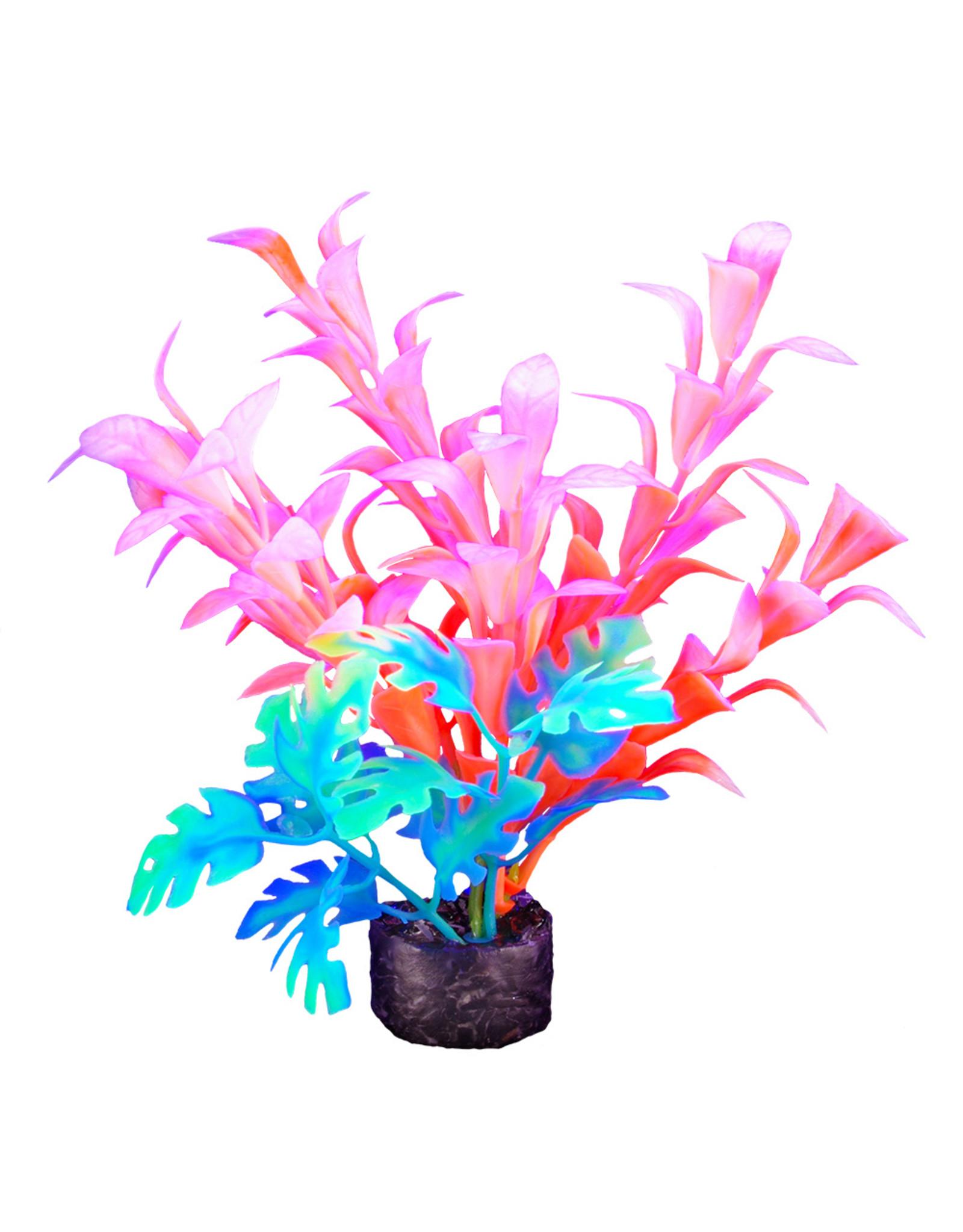 """Marina MARINA iGlo Plant 5.5"""""""