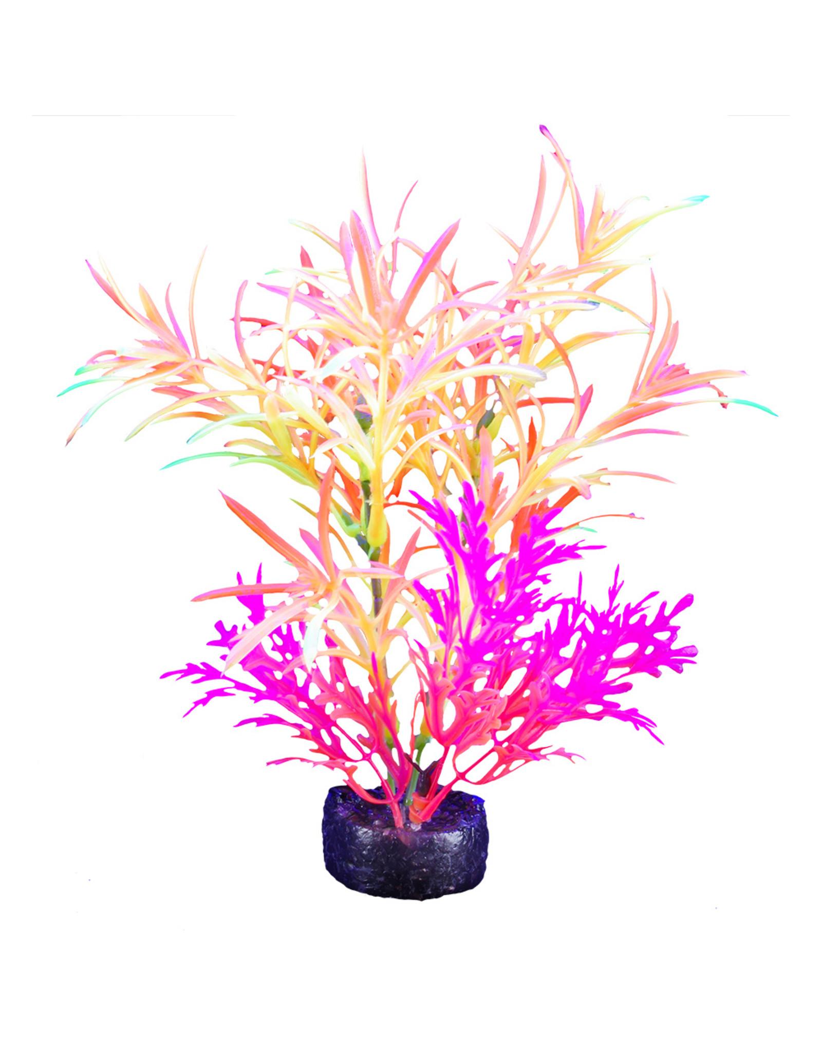 """Marina MARINA iGlo Plant 7.5"""""""