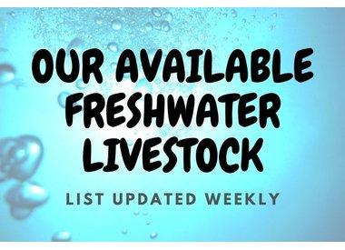 Aquatic Livestock