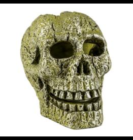 Tetra TETRA GloFish Ornament, Skull