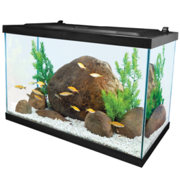 Tetra TETRA LED Deluxe Kit 20 Gal