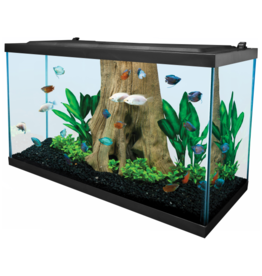 Tetra TETRA LED Deluxe Kit 29 Gal
