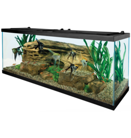 Tetra TETRA LED Deluxe Kit 55 Gal