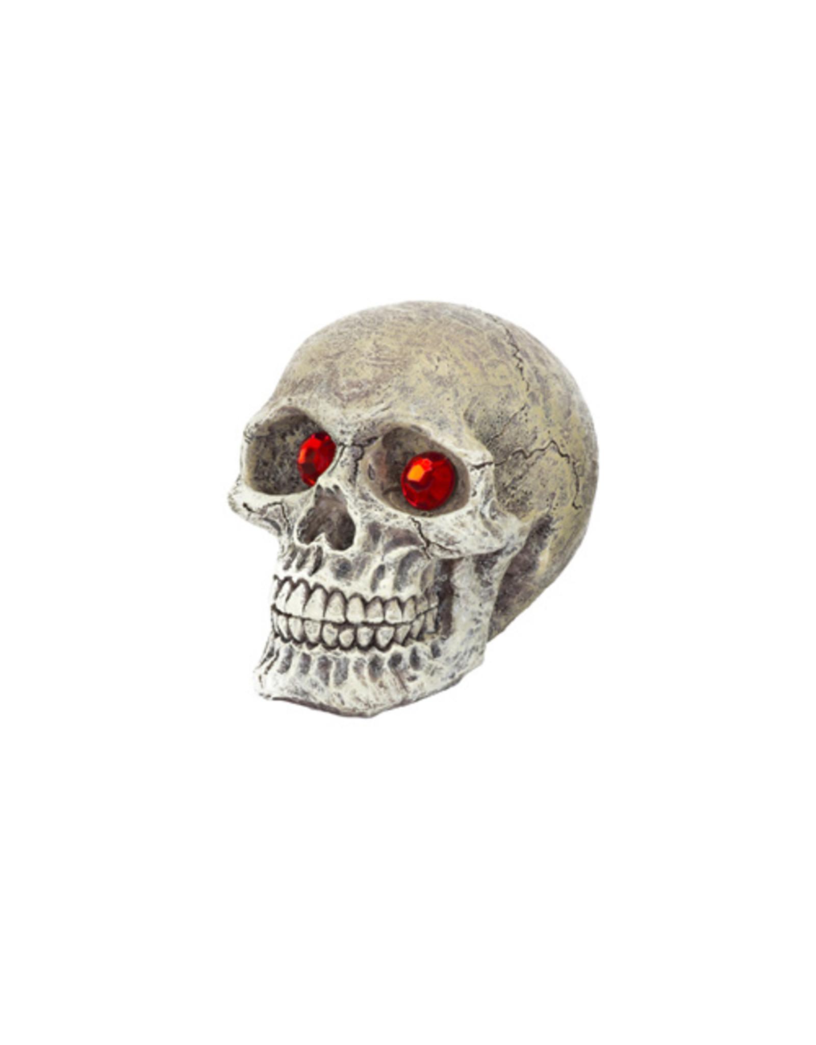 Penn Plax PENN PLAX Skull Gazer Mini Resin