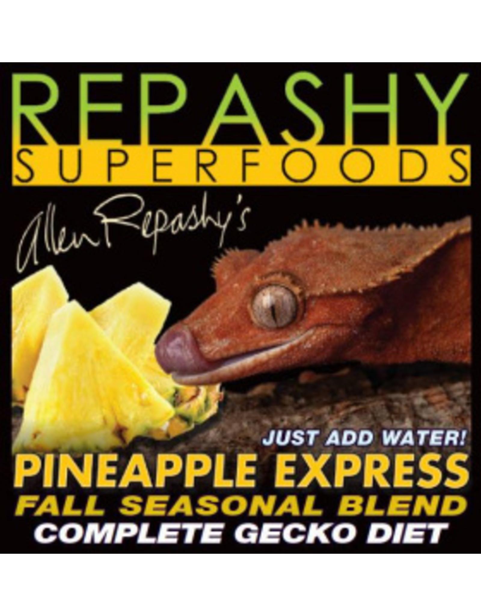Repashy REPASHY Pineapple Express Gecko MRP