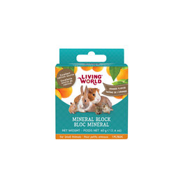 Living World LIVING WORLD Small Animal Mineral Block Orange