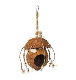 Prevue PREVUE Naturals Coco Hideaway with Shells Toy