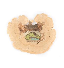 New Cal Pet NEW CAL Sponge Mushroom 2 Pack