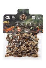 Pro Bugs PRO BUGS Dubia Cockroach Bulk Medium (228pcs)