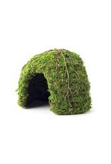 Galapagos GALAPAGOS Mossy Dome Hide Green