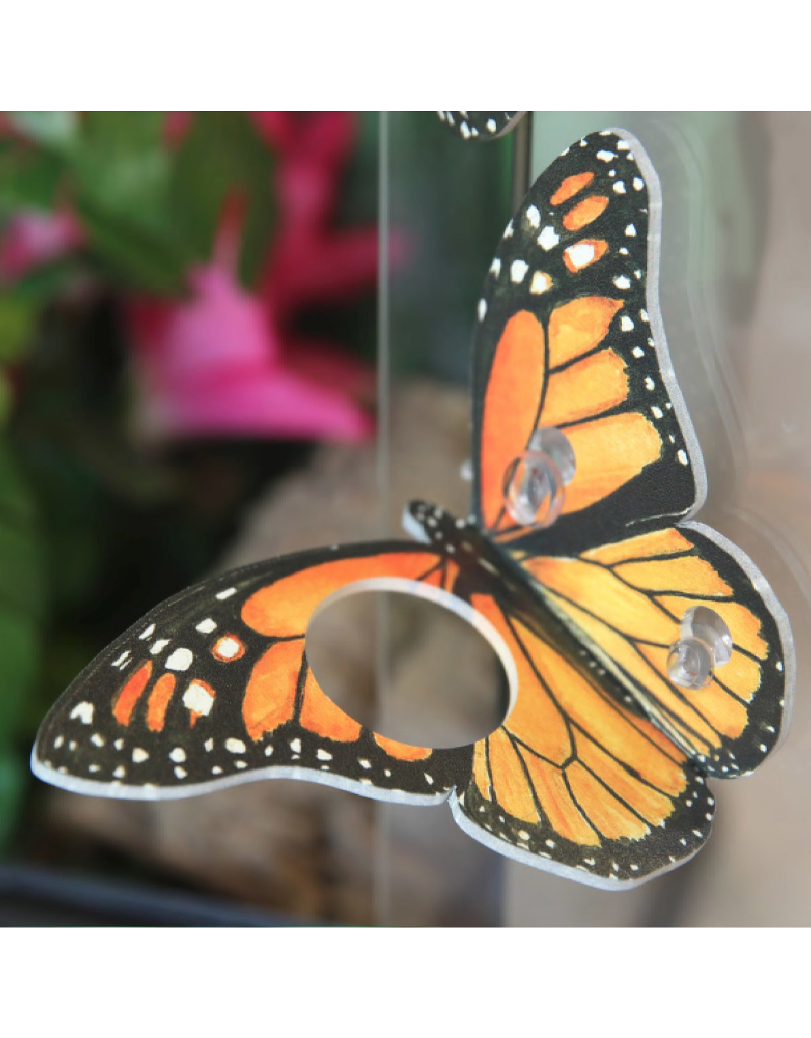 C3 - Colorful Crested Creatures C3 Butterfly Ledge w/ Suction Cup 0.5oz