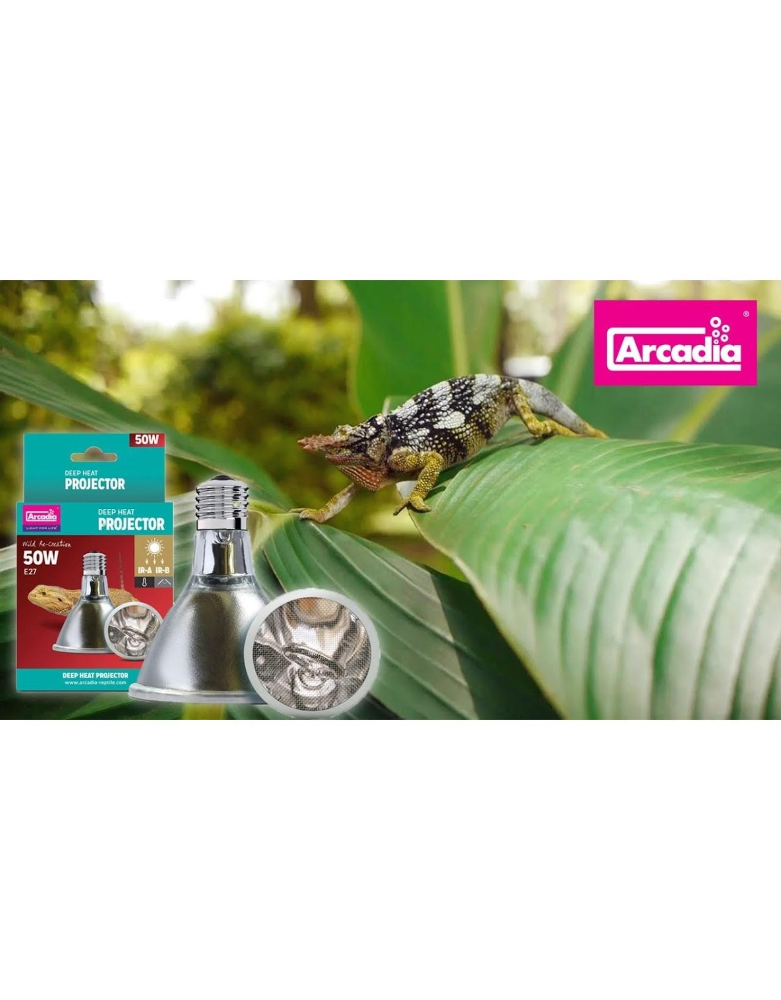 Arcadia ARCADIA Deep Heat Projector 50W