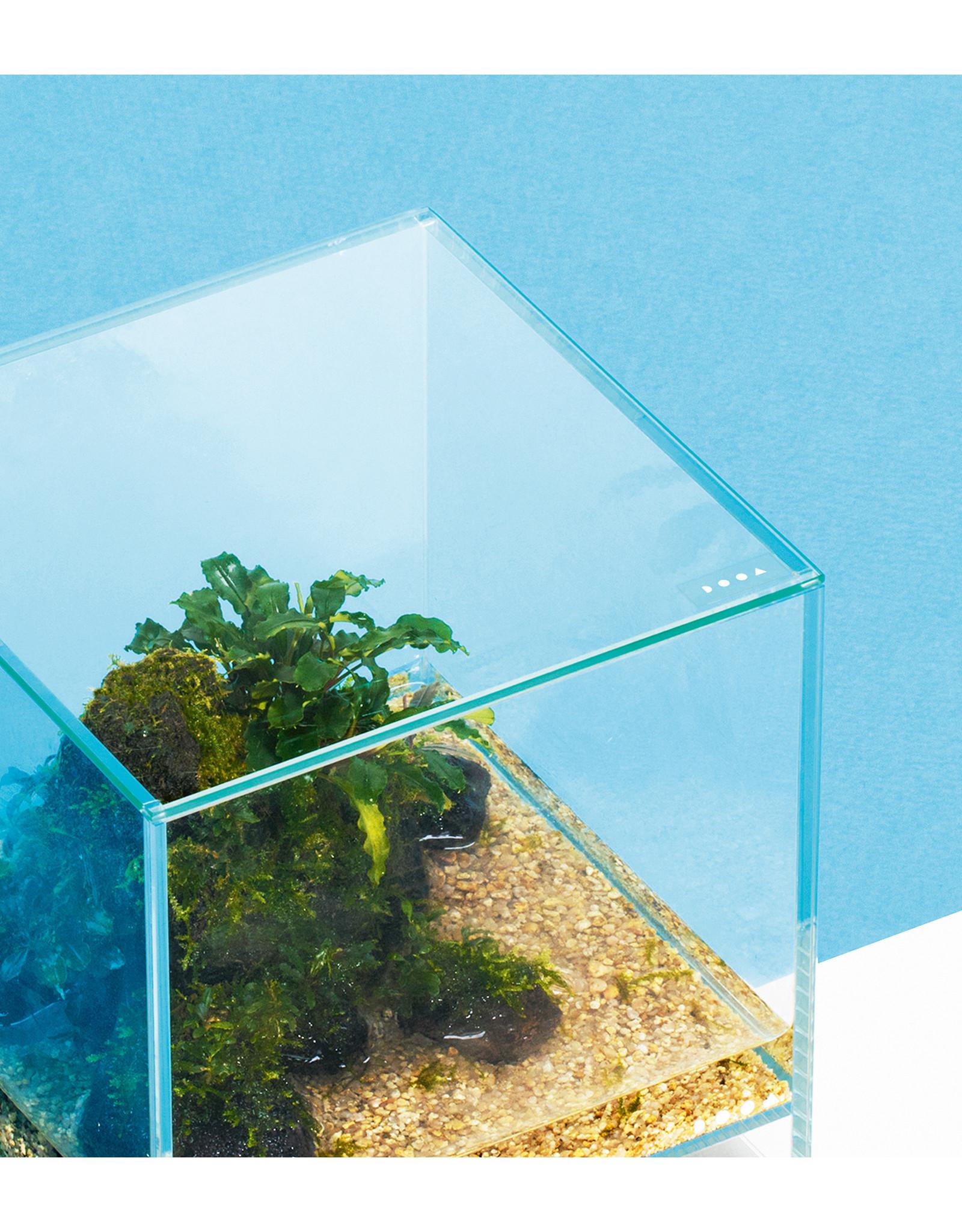 DOOA DOOA Neo Glass AIR Glass Cover 30x30cm