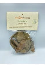 Catappa Canada CATAPPA CANADA Guava Leaves 12 Pack