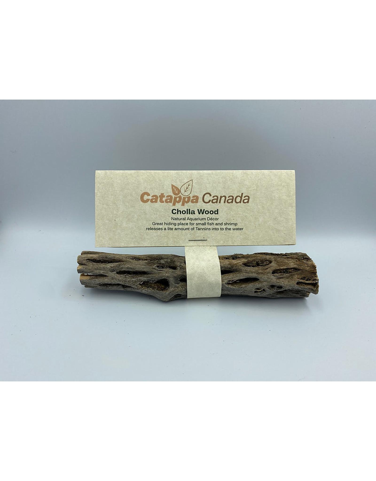 "Catappa Canada CATAPPA CANADA Cholla Wood (6"")"