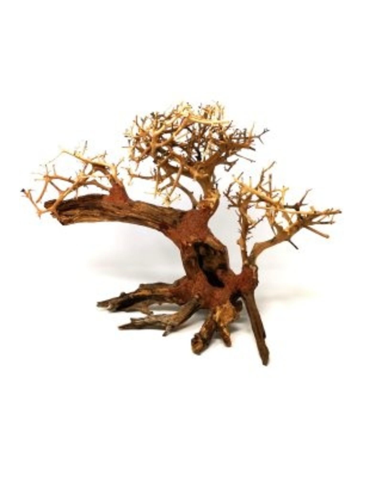 Aquaglobe Products AQUAGLOBE Dragon Wood