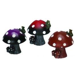 "Burgham Aqua-Fit AQUA-FIT Mushroom 2x1x1.5"""