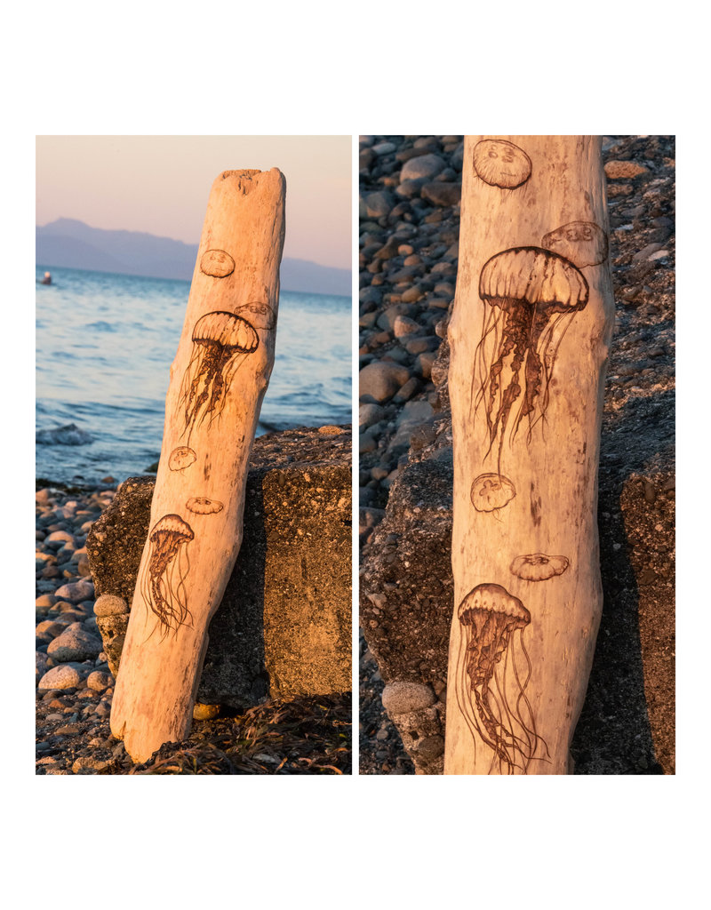 Wild Pine Design Large Jellyfish Driftwood