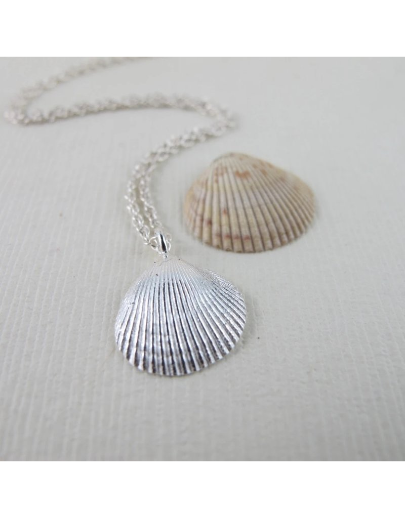"""Swallow Jewellery Shell from Saratoga Beach 16"""" Necklace"""