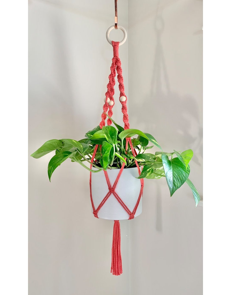 Nordick Knots Twisted Plant Hanger- Coral