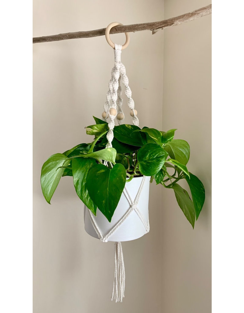 Nordick Knots Twisted Plant Hanger- White