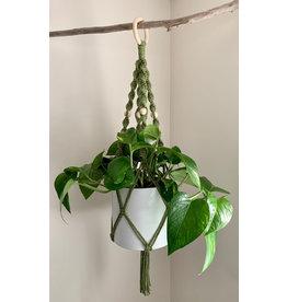 Nordick Knots Twisted Plant Hanger- Avocado