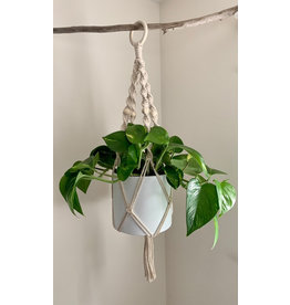 Nordick Knots Twisted Plant Hanger- Cream