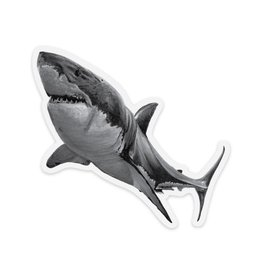 Pen on Paper Co Shark Sticker