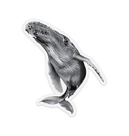 Pen on Paper Co Humpback Whale Sticker