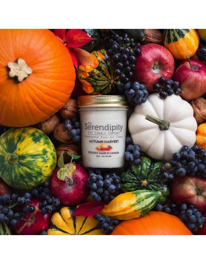 Serendipity Autumn Harvest Candle