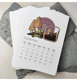Amanda Key Design 2022 Calendar Pacific Potions