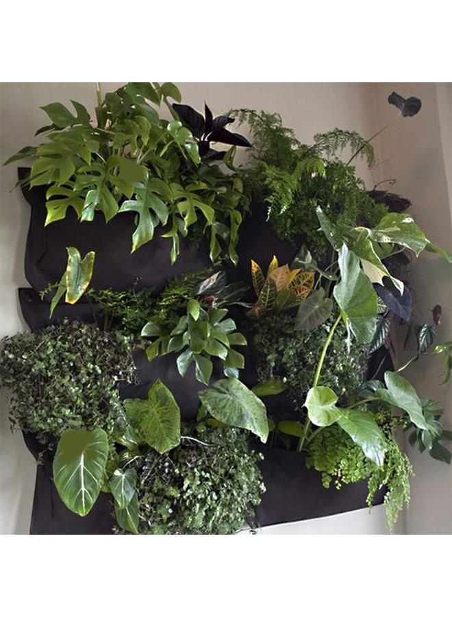 Woollypocket black living wall planter