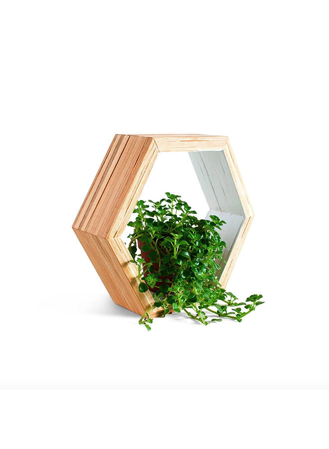 Recycled Chopstick Hex Wall Shelf
