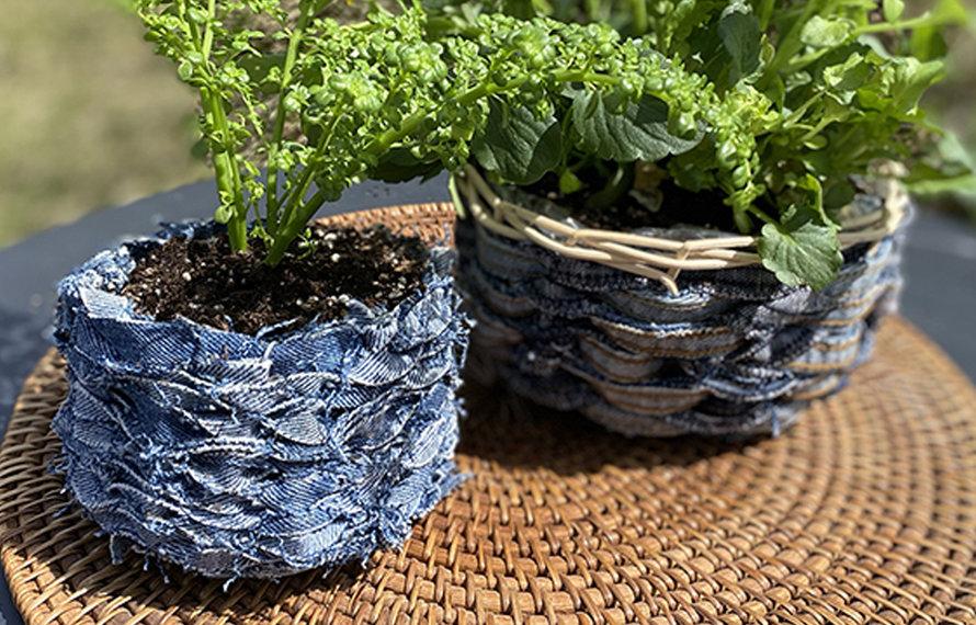 Upcycled Gardening Ideas