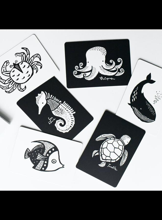 Ocean Art Cards