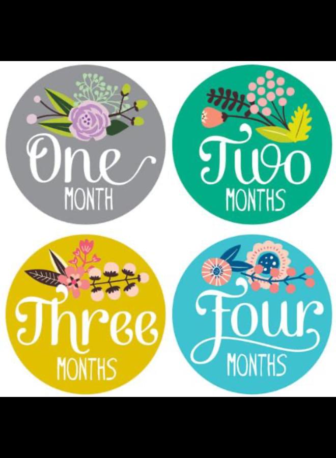 Little Artist Monthly Sticker