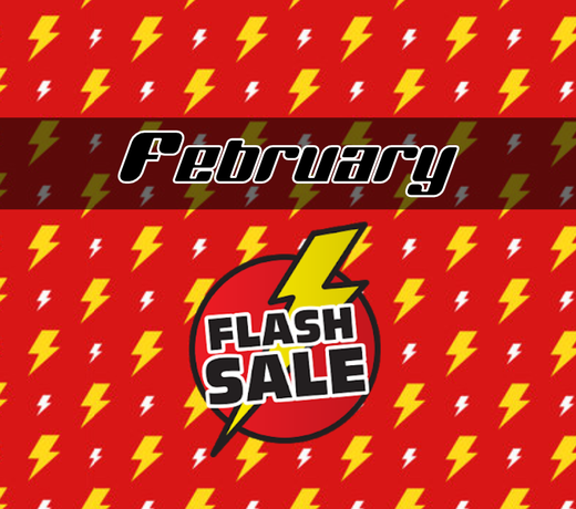 February Flash Sale  (Exempt from Free Shipping)