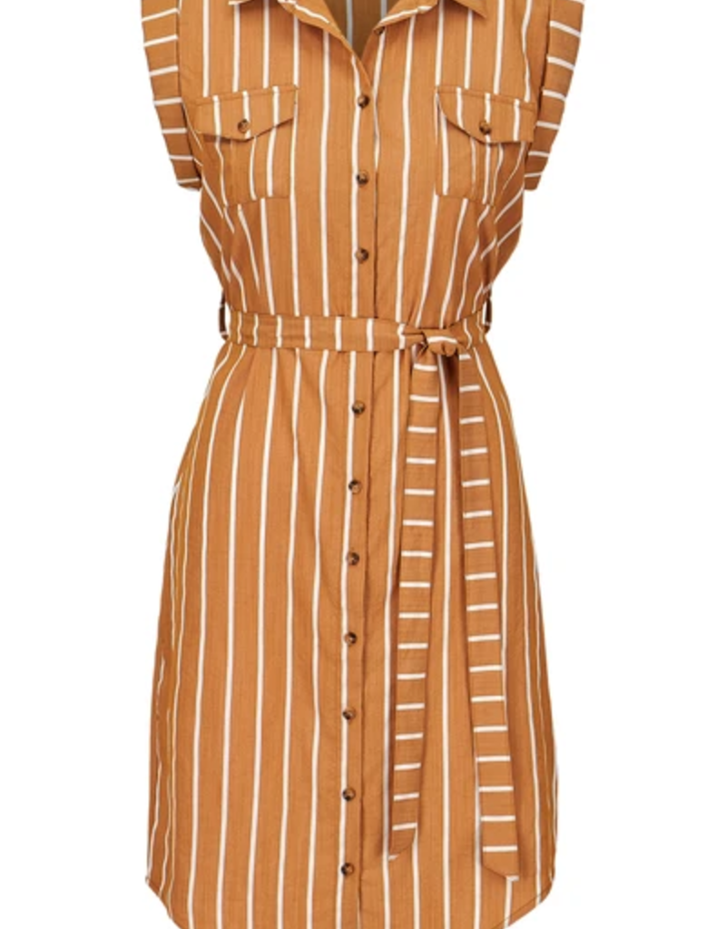 Bishop & Young Striped Button Front Dress